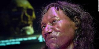 'Cheddar Man' had dark skin, says research